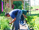 Teen Challenge Health & Rec. - Students Working in the Garden